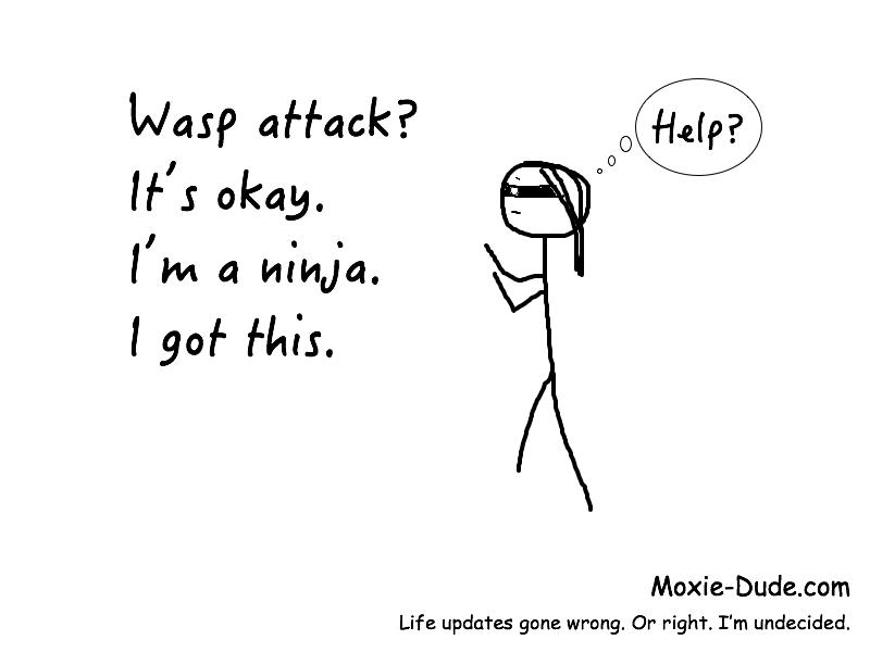 im-a-ninja